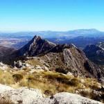 Sendero Torreón