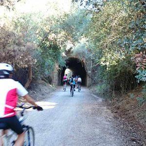 Bicicletas en la Via verde