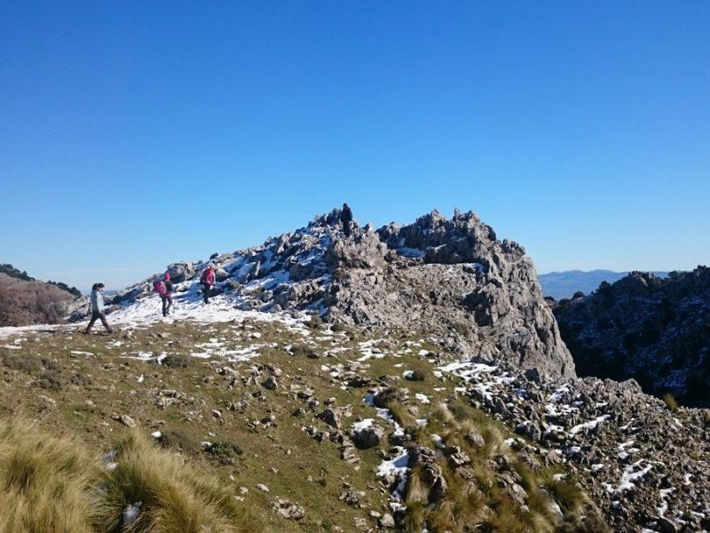 Buscador de actividades y alojamientos. Sierra de Grazalema