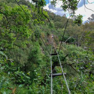 Vía ferrata El Caimán | RSG Aventura